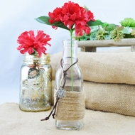 Boho Chic Crafted Glass Message Bottle w/ Cork, Burlap (Dove Sea Style 2) (Discontinued)