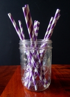Dark Purple Striped Patterned Party Paper Straws (12 PACK) (Discontinued)
