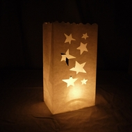 Large Star Paper Luminary Bags Path Lighting (10 PACK)