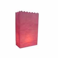 Pink Paper Luminary Bags Path Lighting (10 PACK)