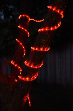 Red fairy led outdoor string rope light 33ft clear tube on sale red outdoor led fairy string rope light 33 ft clear tube ac plug in aloadofball Choice Image