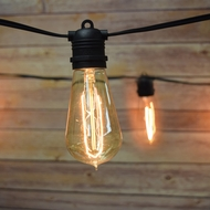 String Lights and Bulbs - Custom DIY