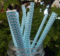 Turquoise Chevron Patterned Party Paper Straws (12 PACK)
