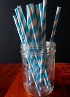 Turquoise Striped Patterned Party Paper Straws (12 PACK)