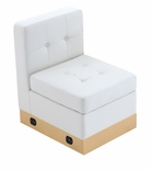 Tufted White with Custom Kick Panel - Armless Chair Component
