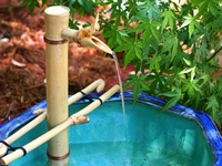 Bamboo Adjustable Water Spout and Pump Kit (12 Inch) Branch Arms