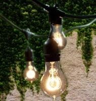 Bulbrite 15 Bulb Outdoor String Light Kit with Nostalgic Bulbs (Commercial Grade) STRING15/E26-A19KT