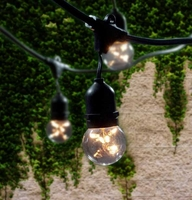 Bulbrite 15 Bulb Outdoor String Light Kit with Starlight Bulbs (Commercial Grade) STRING15/E26-G16KT