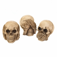 Skeleton Trio 10017293