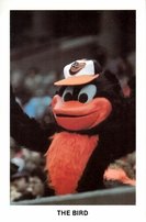 Cal Ripken Sr. and The Bird mascot Baltimore Orioles 1980s postcards