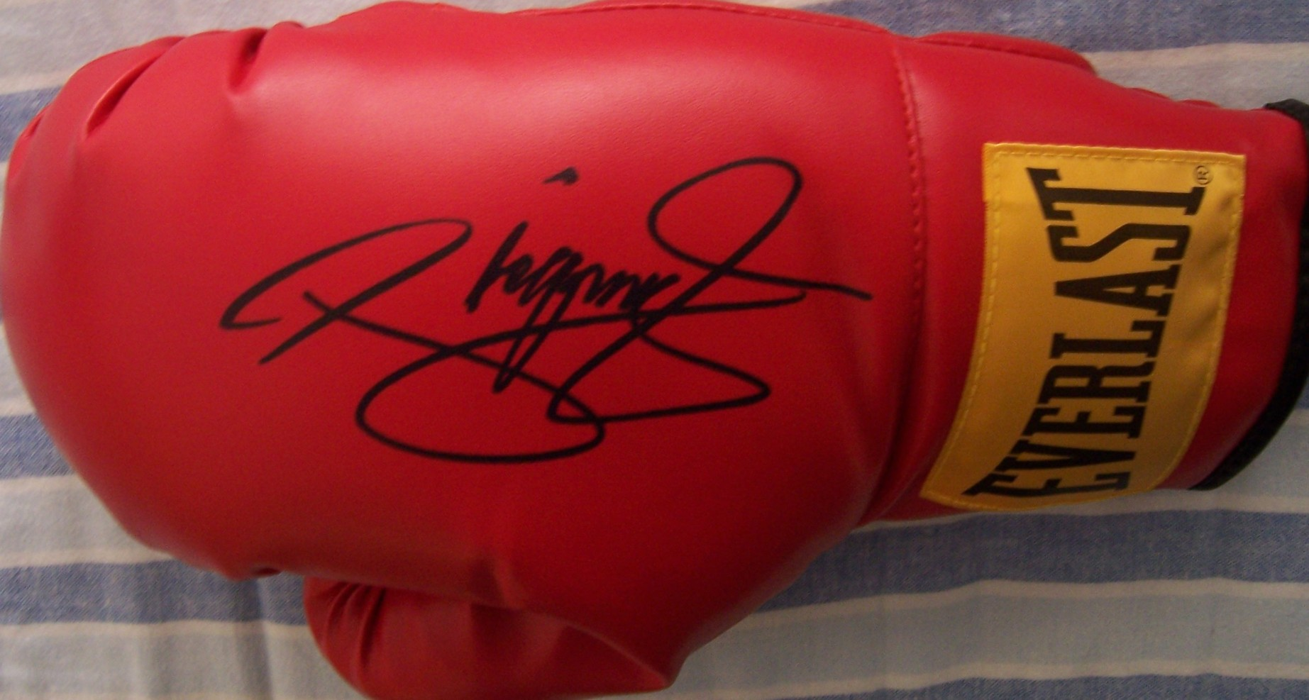 Manny Pacquiao autographed Everlast boxing glove - Boxing ...