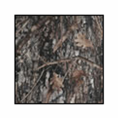 Cargo Area Liner (True Timber Camo - Extra Large)