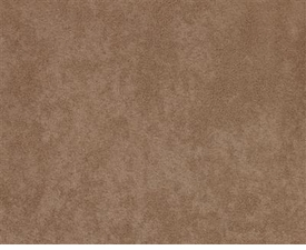 arizona/buckskin fabric