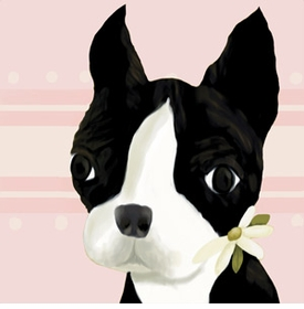 bea the boston terrier pink canvas