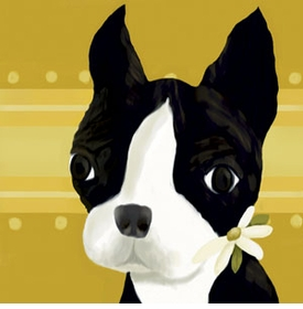 bea the boston terrier wall art canvas