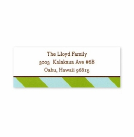 boatman geller aqua & olive stripes address labels