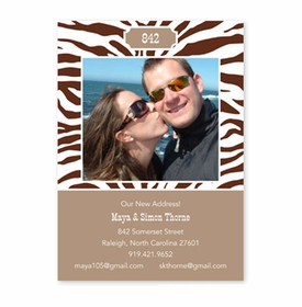 boatman geller zebra chocolate flat photocard