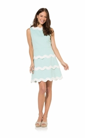 cabbage ric rac fit and flare dress