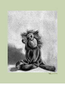 charcoal monkey - sage border - wall art canvas reproduction by margot curran