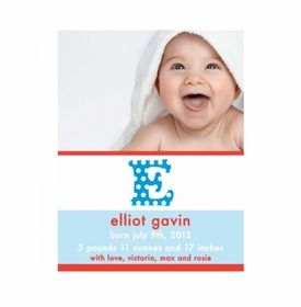 flat print baby announcement - the elliot