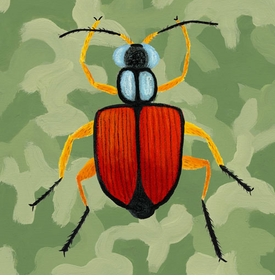 green camo beetle wall art