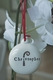 hand painted ceramic candy cane christmas ornament