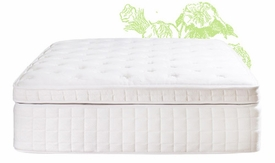 luxury series mattresses