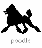 style poodle