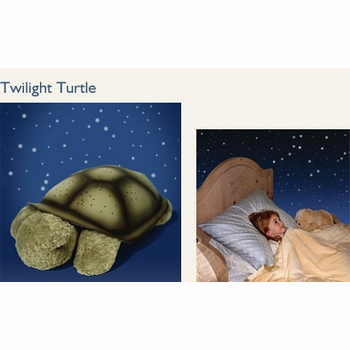 twilight turtle by cloud b
