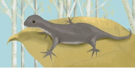 wendell the lizard wall art canvas reproduction
