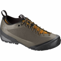 Click to enlarge image of ARC'TERYX Acrux FL Approach Shoes (Men's)