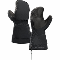 Click to enlarge image of ARC'TERYX Alpha SV Mittens