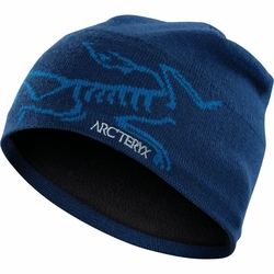 Click to enlarge image of ARC'TERYX Bird Head Toque