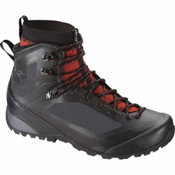 Click to enlarge image of ARC'TERYX Bora2 Mid GTX Hiking Boots (Men's)