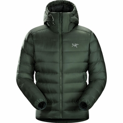 Click to enlarge image of ARC'TERYX Cerium SV Hoody (Men's)