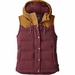 Patagonia Bivy Hooded Vest (Women's)