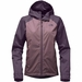 The North Face Altier Down Triclimate Jacket (Women's)