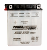 Power-Sonic 12N12A-4A-1 12-Volts 113-CCA