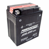 Power-Sonic PTX14AHL-BS 12-Volts 160-CCA