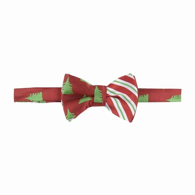 Andy & Evan Boys Bow Tie - Red / Green Christmas Trees and Stripes