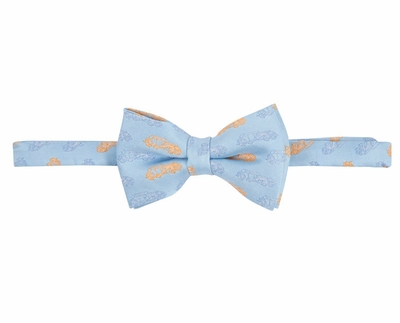Andy & Evan Boys Cars Print Bow Tie - Blue