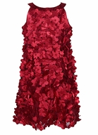 Biscotti Baby / Toddler Girls Gorgeous La Belle Fleur Christmas Dress - All Over Petals - RED