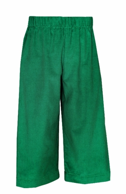 Funtasia Too Color Works Boys Pull On Pants - Corduroy - Green