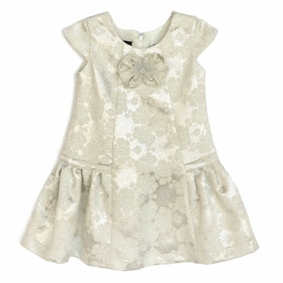 Isobella & Chloe Girls Ivory Icicle Holiday Party Dress - Drop Waist