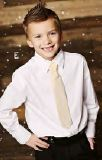 Mustard Pie Boys Necktie - Golden