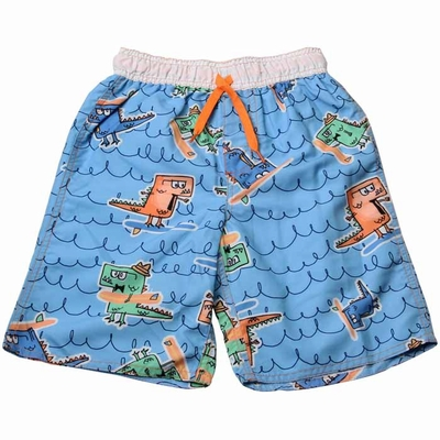 Wes & Willy Boys Blue Dinosaur Dino Surf Swim Trunks