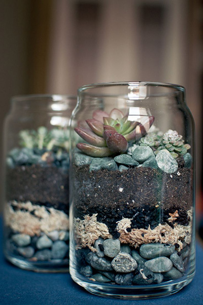 Succulent Decorating Ideas