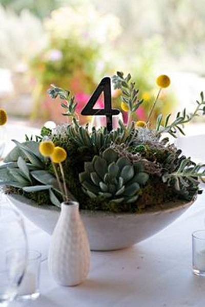 Attirant Succulent Decorating Ideas