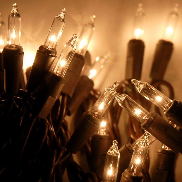 Clear Mini String Lights Brown Cord 50 Bulbs
