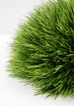 Grasses grass mats tropical matting for Faux grass for crafts